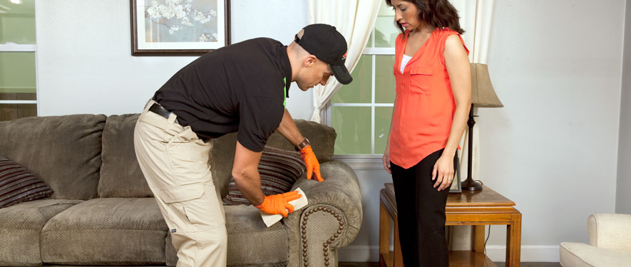 Englewood, FL carpet upholstery cleaning